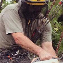 Elmbridge Tree Services Testimonials